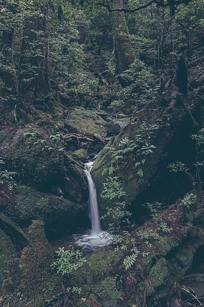 Ett av många vattenfall.